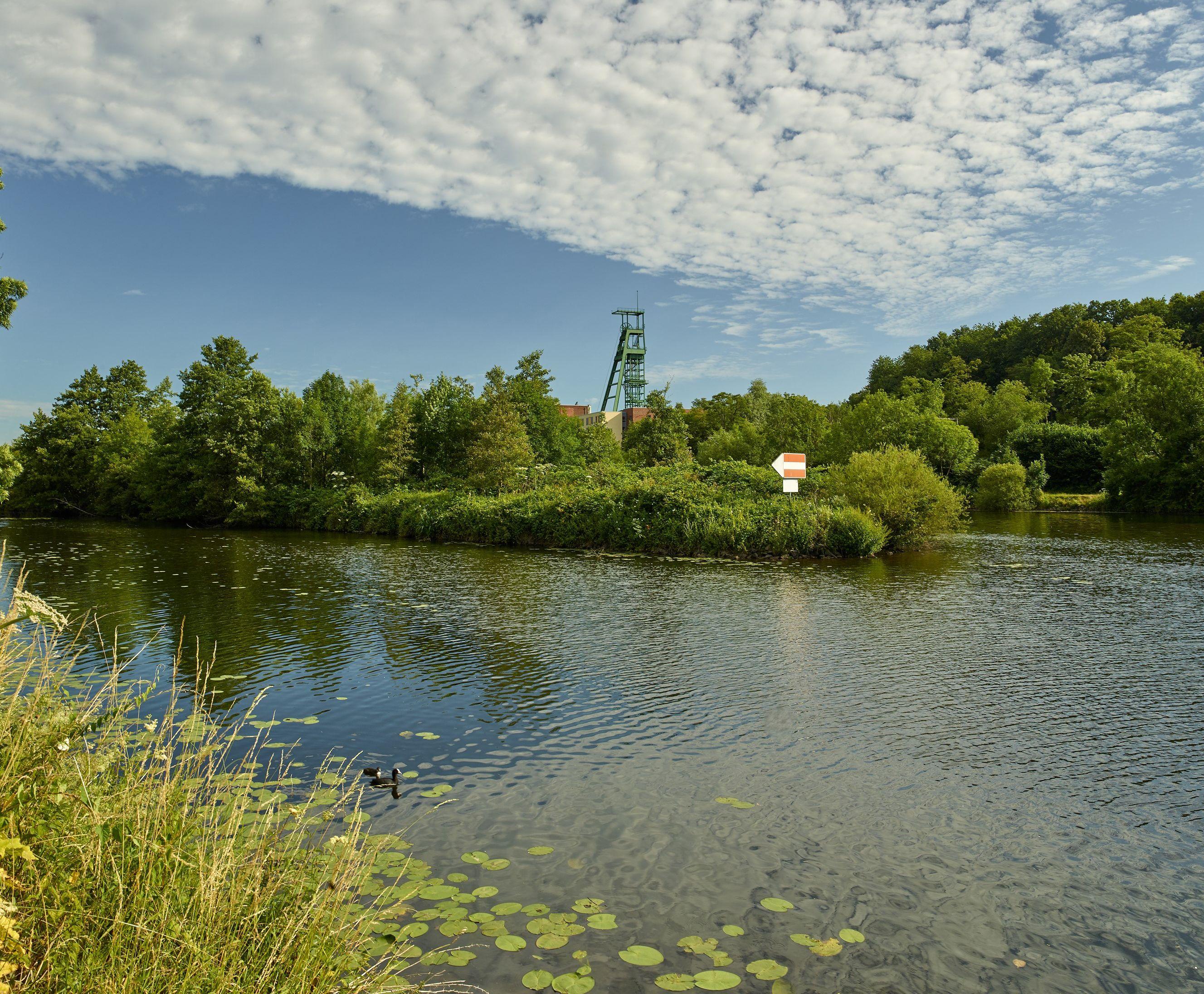 In einigen Bergsenkungsgebieten entstanden ökologisch wertvolle Biotope, die neuen Lebensraum für Pflanzen und Tiere bieten © Dietmar Klingenburg